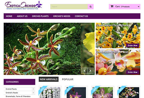 ecommerce website for exotica orchids