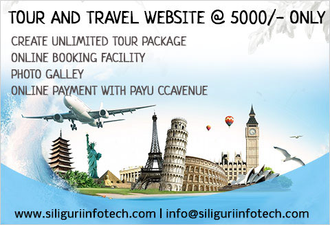 tour and travels website designing in siliguri